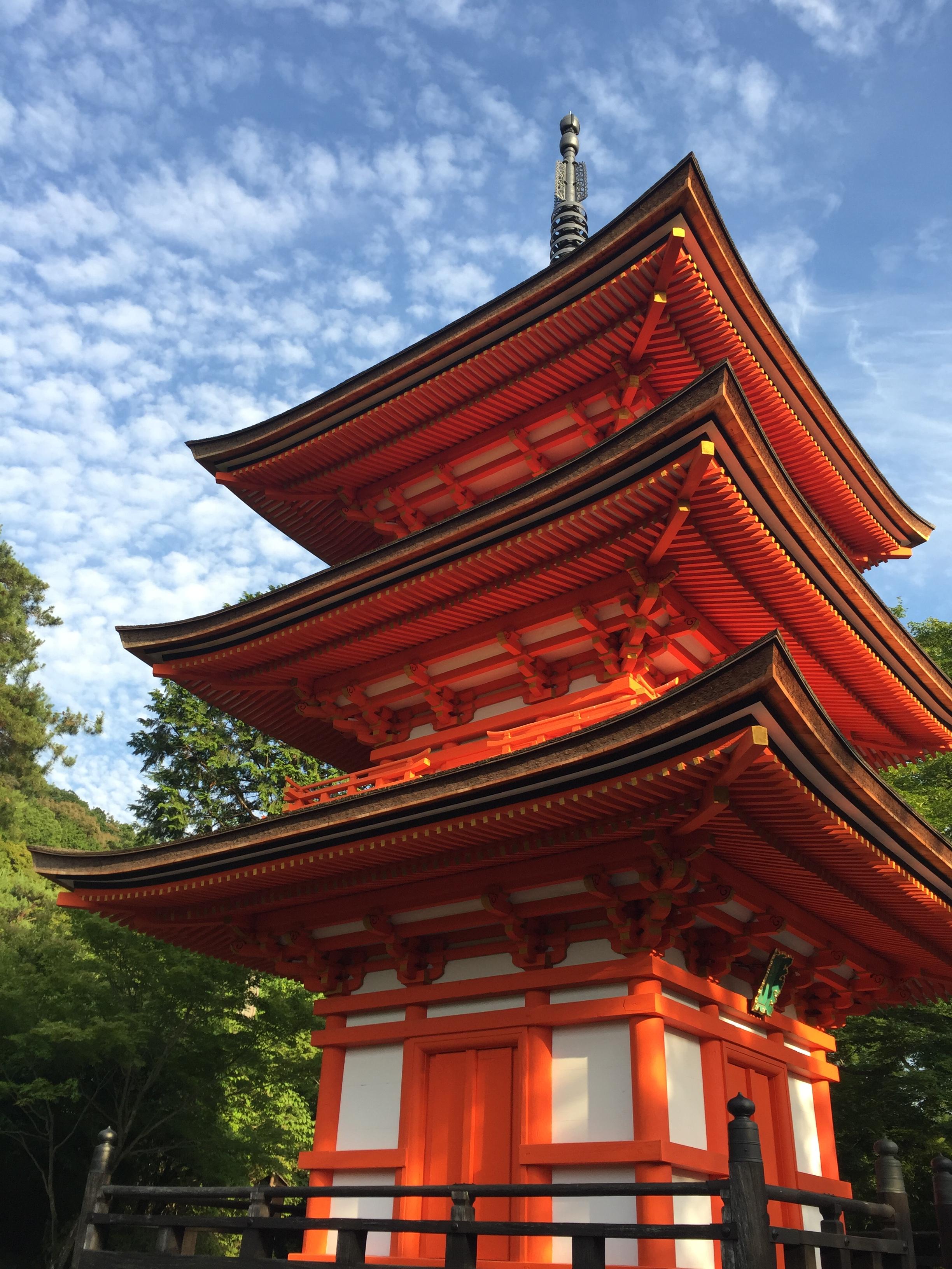 Japan Tokyo- Paxton Lemmon